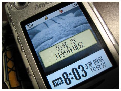 day_0309.jpg